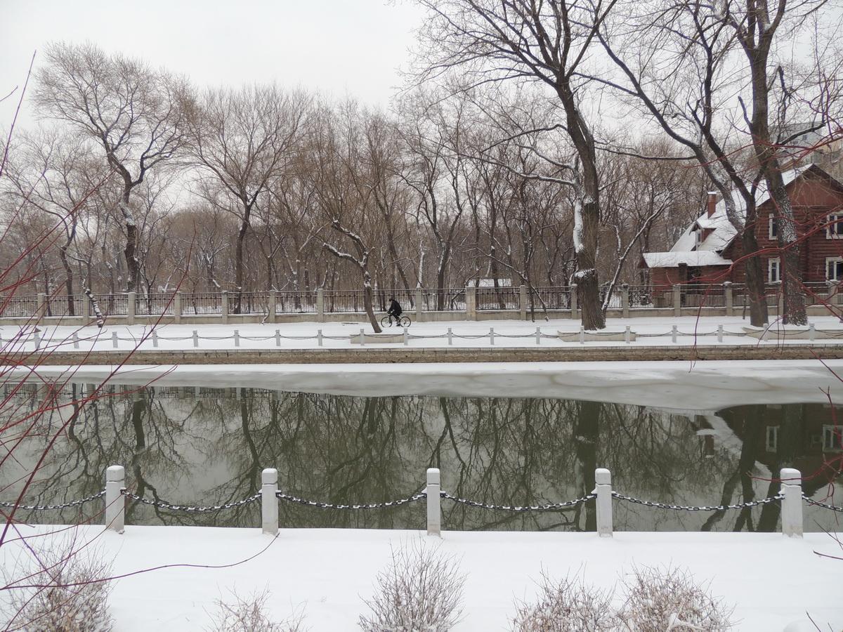 雪后02.JPG